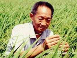 袁隆平5月22日与世长辞,享年91岁!